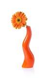 Flor del Gerbera en un florero Foto de archivo libre de regalías