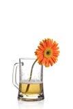 Flor del Gerbera en una taza fotos de archivo libres de regalías