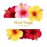 Flor del hibisco del vector Tarjeta _1 de la invitación Imagen de archivo libre de regalías