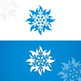 Flor del hielo Fotografía de archivo libre de regalías