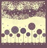 Flor del invierno Imagen de archivo