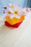 Flor del jabón y del frangipani Foto de archivo