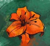 Flor del lirio Stock de ilustración