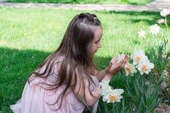 Flor del narciso del olor de la niña en el tiempo de primavera foto de archivo