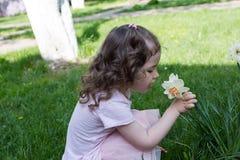 Flor del narciso del olor de la niña en el tiempo de primavera fotografía de archivo libre de regalías