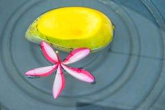 Flor del Plumeria, mango maduro cortado, con el agua en el envase foto de archivo