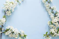 Flor del resorte imágenes de archivo libres de regalías