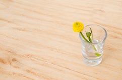 Flor del resorte Primavera o flor del verano en vidrio en un fondo de madera de la tabla imagenes de archivo