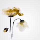 Flor del vector de la acuarela Imagen de archivo libre de regalías