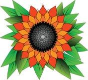 Flor dibujada brillante Imagenes de archivo