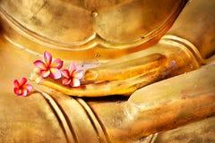 Flor a disposición de buddha Imagen de archivo