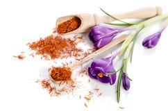 Flor do açafrão com açafrão Imagem de Stock