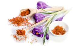 Flor do açafrão com açafrão Imagens de Stock Royalty Free