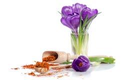 Flor do açafrão com açafrão Foto de Stock