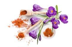 Flor do açafrão com açafrão Imagem de Stock Royalty Free