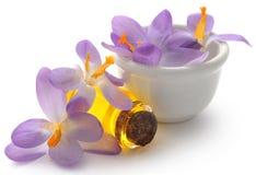 Flor do açafrão de açafrão com extrato Imagens de Stock Royalty Free