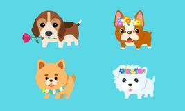 Flor do cachorrinho ilustração royalty free
