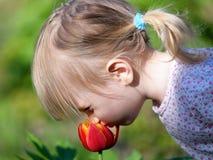 Flor do cheiro da menina Fotografia de Stock Royalty Free