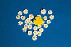 Flor do coração Fotos de Stock Royalty Free