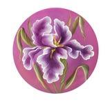 Flor do desenho da íris pela aquarela, ilustração tirada mão Imagens de Stock Royalty Free
