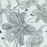 Flor do desenho - ilustração ilustração royalty free