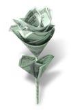 Flor do dinheiro fotografia de stock