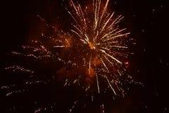 Flor do foguete dos fogos-de-artifício no céu noturno foto de stock royalty free