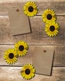 Flor do fundo Foto de Stock