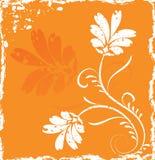 Flor do fundo de Grunge, elementos para o projeto, vetor Fotografia de Stock Royalty Free