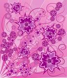 Flor do fundo, elementos para o projeto, vetor Fotografia de Stock Royalty Free