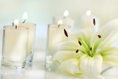 Flor do lírio com vela Imagens de Stock Royalty Free