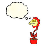 flor do monstro dos desenhos animados com bolha do pensamento Fotos de Stock