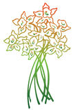 Flor do narciso Ilustração Royalty Free