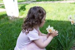 Flor do narciso do cheiro da menina no tempo de mola fotografia de stock