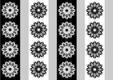 Flor do papel de parede do fundo Fotografia de Stock