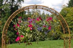 Flor do potenciômetro Fotos de Stock