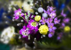Flor do ramalhete da flor, a roxa e a amarela foto de stock
