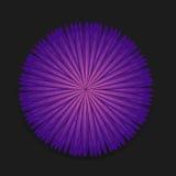 Flor do roxo do vetor Imagens de Stock