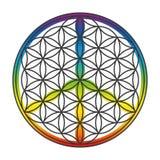 Flor do símbolo de paz da vida sobreposto Fotos de Stock