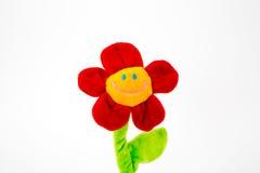 Flor do sorriso Imagens de Stock