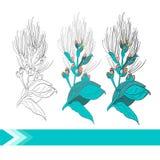 Flor do vetor Fotografia de Stock