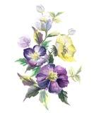 Flor do vetor em um fundo branco Fotos de Stock