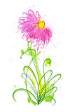 Flor dos borrões 1 ilustração do vetor