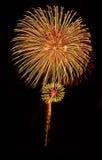 Flor dos fogos-de-artifício Imagens de Stock