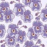 Flor dos Pansies Imagens de Stock