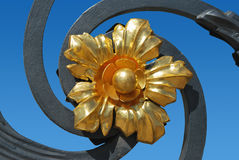 Flor dourada Imagem de Stock