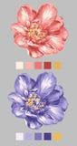 Flor drenada mano 01 Fotografía de archivo libre de regalías