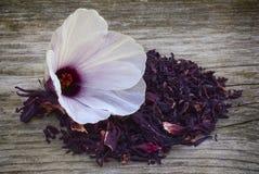 A flor e as sépalas do chá do hibiscus (sabdariffa do hibiscus) secaram para i Imagens de Stock Royalty Free