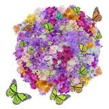 Flor e borboleta da abundância fotografia de stock royalty free