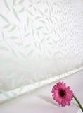 Flor e cortinas vermelhas Imagem de Stock